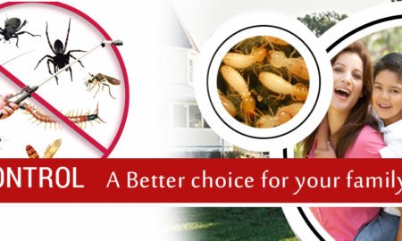 Local Pest Control Melbourne