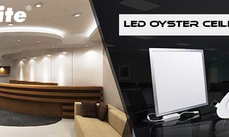 Led Oyster Ceiling Lights