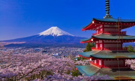 group tours to japan